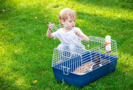 rabbit cage: Cute boy opening a cage with a pet rabbit in a park