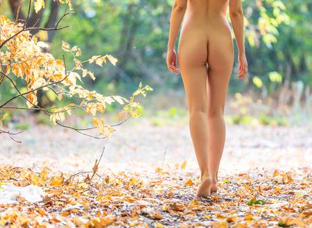 femmes nues sexy: tondu, vue, belle femme nue marchant dans la for�t d'automne
