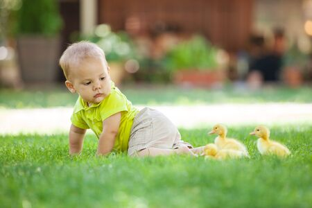 Baby boy crawling on green grass and looking back at spring ducklings