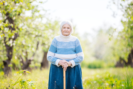 elder tree: Senior woman on a walk in the orchard