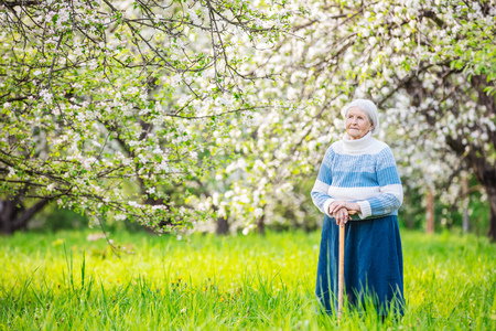 sticks: Senior woman standing in blossoming orchard