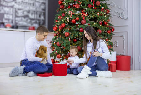 Happy young couple and their baby son opening gift boxes at Christmas tree. Man is holding spitz dog. Standard-Bild