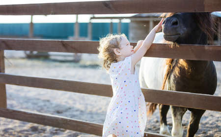 Little blonde girl stroking pony through fence in zoo Standard-Bild