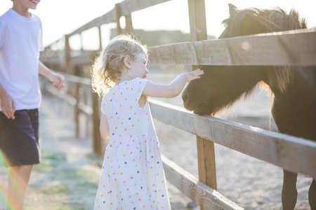 Little blonde girl stroking pony in zoo, her brother watching her and smiling