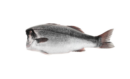 kipper: fish without head on a white background