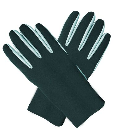 winter gloves: black winter gloves Stock Photo