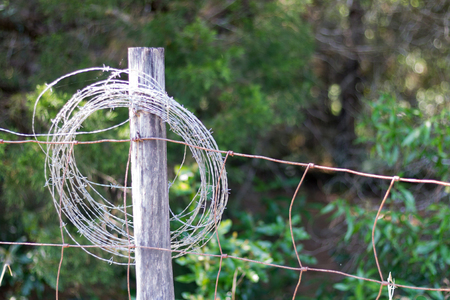 Barb wire looped around a fence post