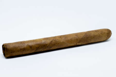 A single rolled cigar on a white background. Stock Photo
