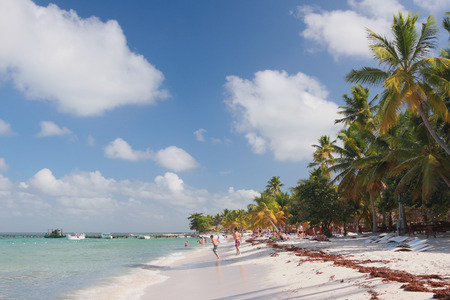 romana: On tropical beach. Isla Saona, La Romana, Dominican republic