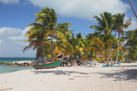 romana: Sandy beach on sea coast. Isla Saona, La Romana, Dominicana