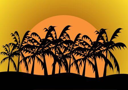 carribean: palm tree background