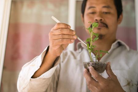 man culture vegetable on plantation