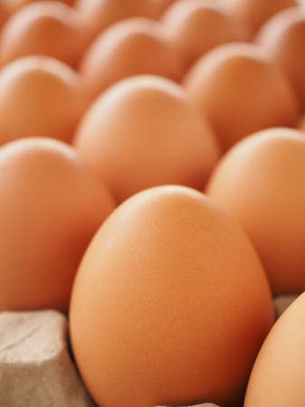 Fresh eggs from the farm in brown paper trays are high in protein and can be eaten daily.