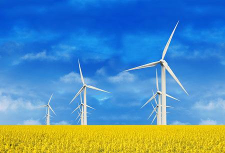 노란색 필드에 풍력 터빈 스톡 콘텐츠