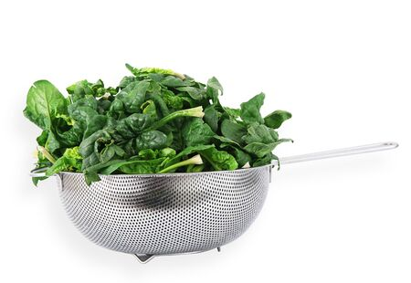 a fresh spinach on white background Banco de Imagens