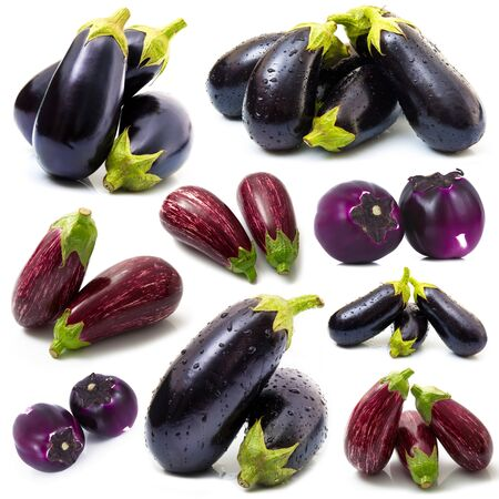 collage of eggplant on white background