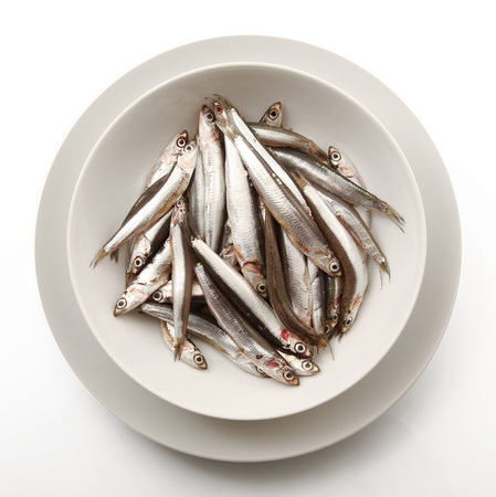 dish of fresh anchovies on white background
