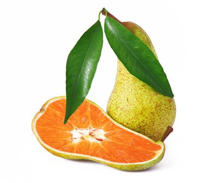 strange ibrid fruit pear-orange