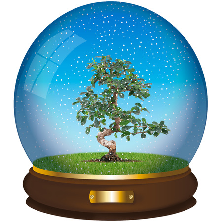 crystall ball with tree on white background Stock Photo