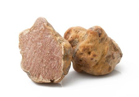 original italian white truffle on white background