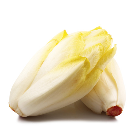 fresh endive salad on white background
