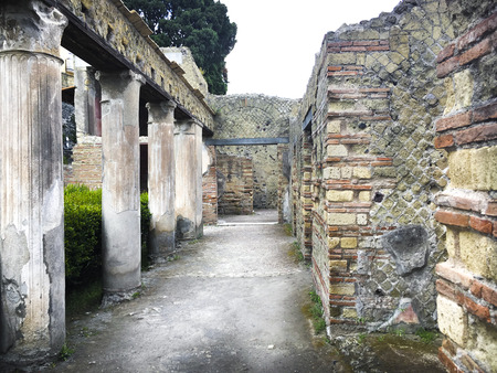 view of the archaeological site of Herculaneum