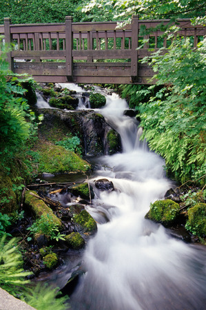 soothing: Columbia River Gorge