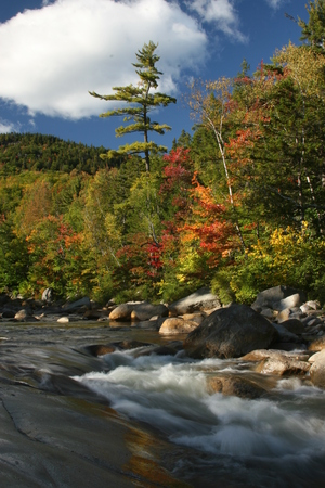 autumn flowing water in New Hampshire Banco de Imagens
