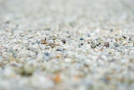 Gravel - Stones Lizenzfreie Bilder