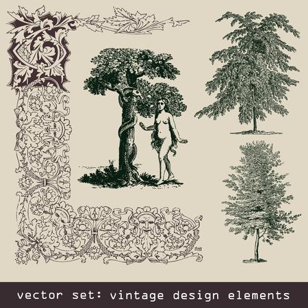 set of design elements - tree, eva, frame, border Illustration