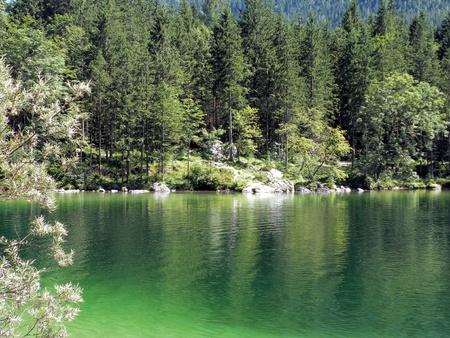 Lake Forest mit Lizenzfreie Bilder