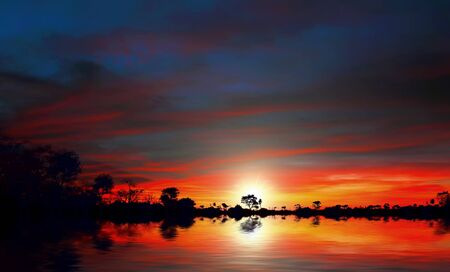 Beautiful sunset at the lake with trees