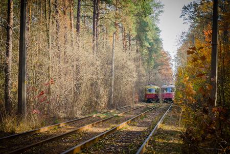 trams: KIEV, UKRAINE - NOVEMBER 01: When red city trams are running through the forest. 01 November 2015 Kiev. Ukraine Editorial