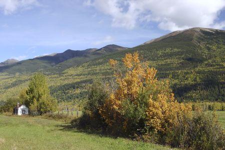hay field: Paesaggio di montagna con fieno campo di fronte