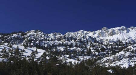 treed: Treed and snow covered mountains in central Turkey