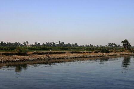 river: Green crops growing along the Nile River Stock Photo