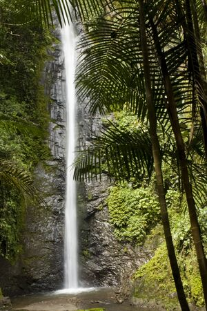 A Waterfall in the Valley of Mindo,  Andean Forest, Ecuador, South America