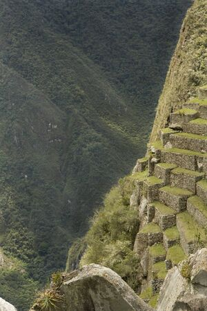 farmed: A Steep view of Machu Picchu slopes that the Incas farmed in Peru, South America