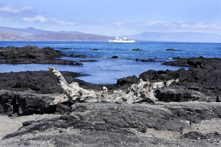 Seascape of the Galapagos Islands, Peru, South America