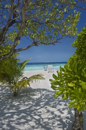 Tropical beach on Maldives Islands Stock Photo