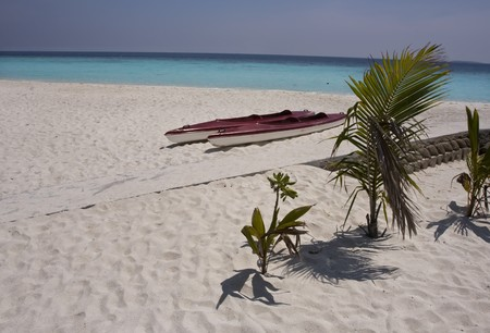 Tropical beach on Maldives Islands Stock Photo - 4400340