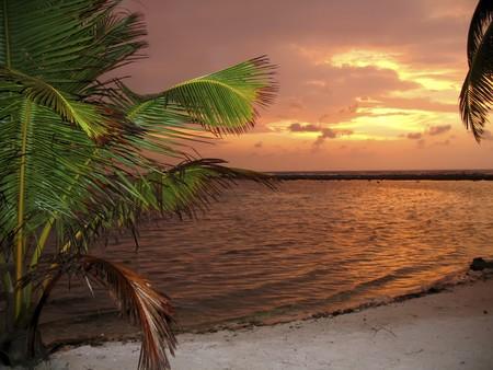 몰디브 섬의 화 염 일몰