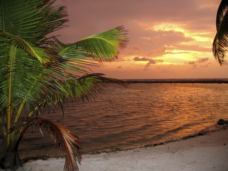 Firery Sunset on Maldives Islands Imagens