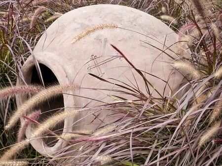 Pot found in tall grass in Peru
