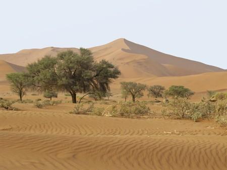 Sand Dune in Namib-Nauktuft National Park Namibia Stock Photo