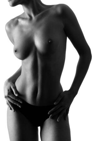 fits in: bodystudio