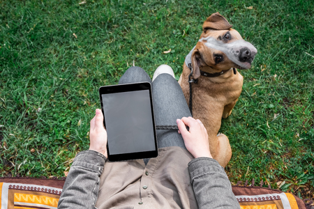 Top view of woman with tablet computer sits at lawn with her cute puppy. Female person surfing internet outdoors in park with her trained staffordshire terrier dog