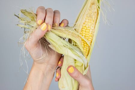 Female hands holding corn cnob. Abstract image of woman fingers with yellow fingernails peeling ear of corn