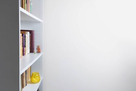 Sparse looking bookshelf with variety of books and copy space. Details of minimalistic home interior of a living room or home office