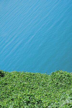 Blue sea water and greens. Vivid natural colors background, copy space image